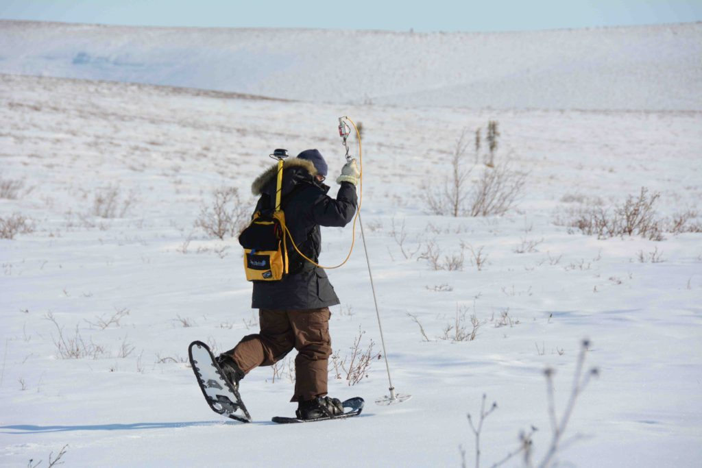 Snowsurveying